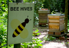220_beehives_sign