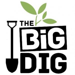 BigDigLogo