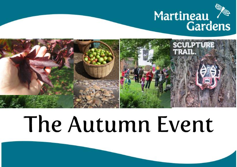 Autumn Event Pictures