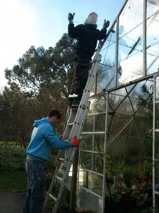 Repairing glass panels on the hot house