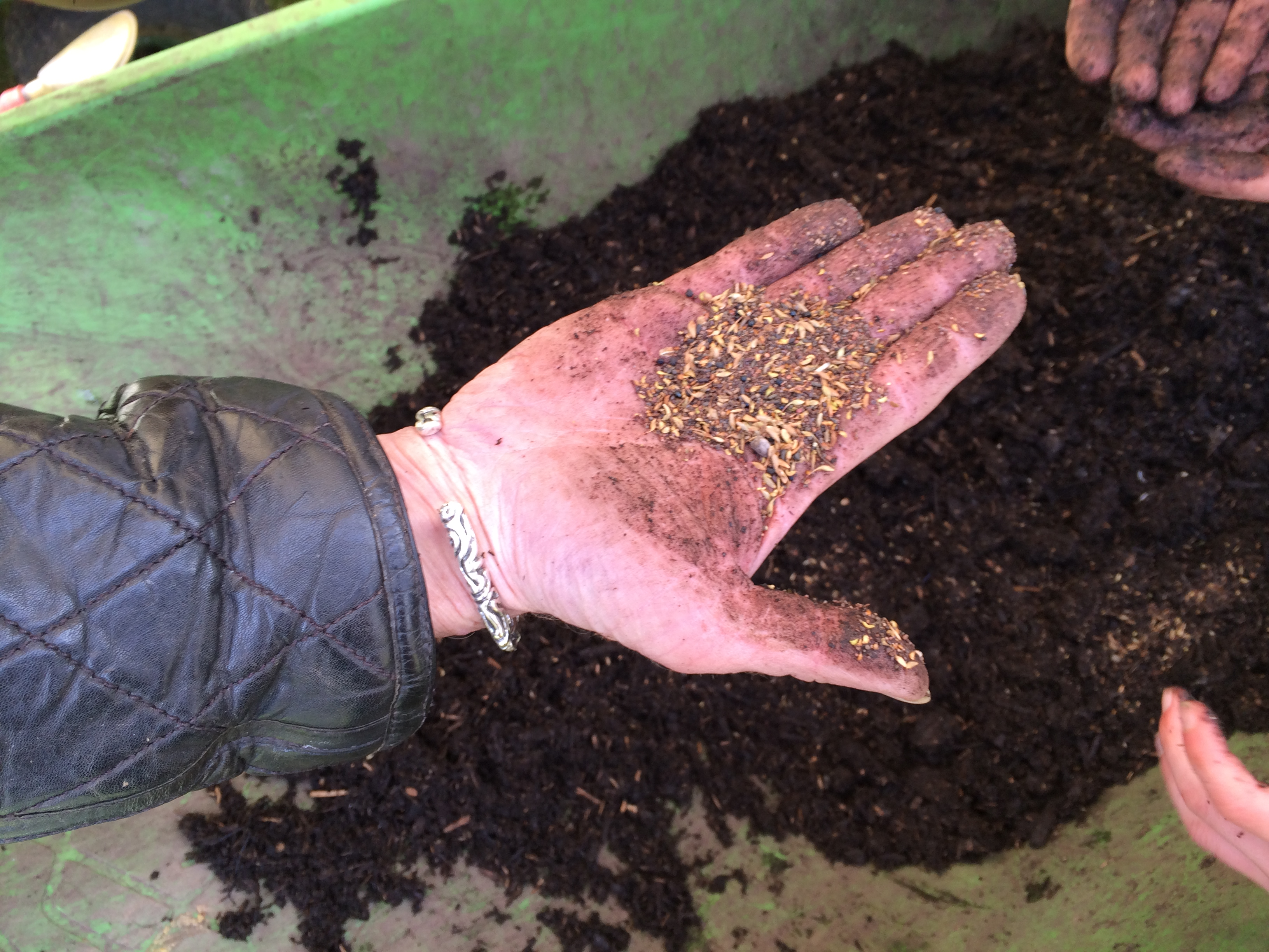 how to make seed compost