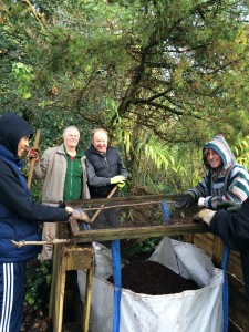 Sieving leaf mould to create soil improver