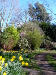 A breath of fresh air at Martineau Gardens