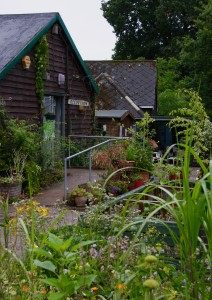 Martineau Gardens' buildings - location for the 'Sustainable Gardens' networking event