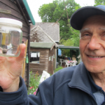 Identifying moth before it is released at Martineau Gardens