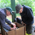 Wildlife volunteers surveying moths in summer at Martineau Gardens